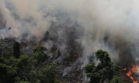 The Amazon rainforest is burnt to clear land for agriculture near Novo Progresso